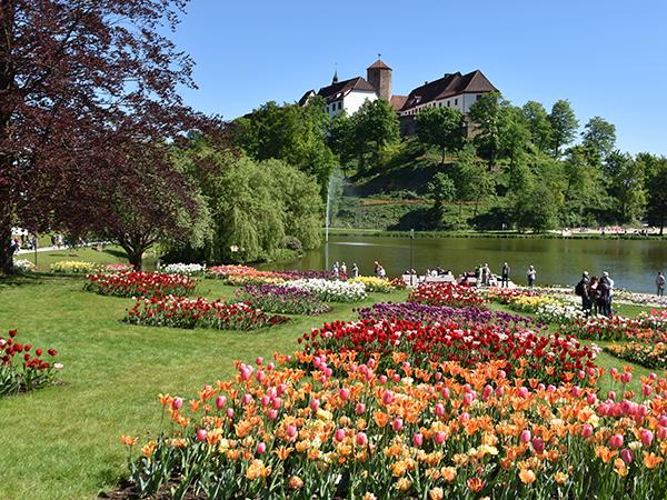 Schloss Landesgartenschau Gartenschau | Hotel im Park | Hotel garni Frühstückshotel | Bad Iburg Osnabrück |Buchung Reservierung | Zimmer Hotelzimmer | Aktivitäten Anfahrt